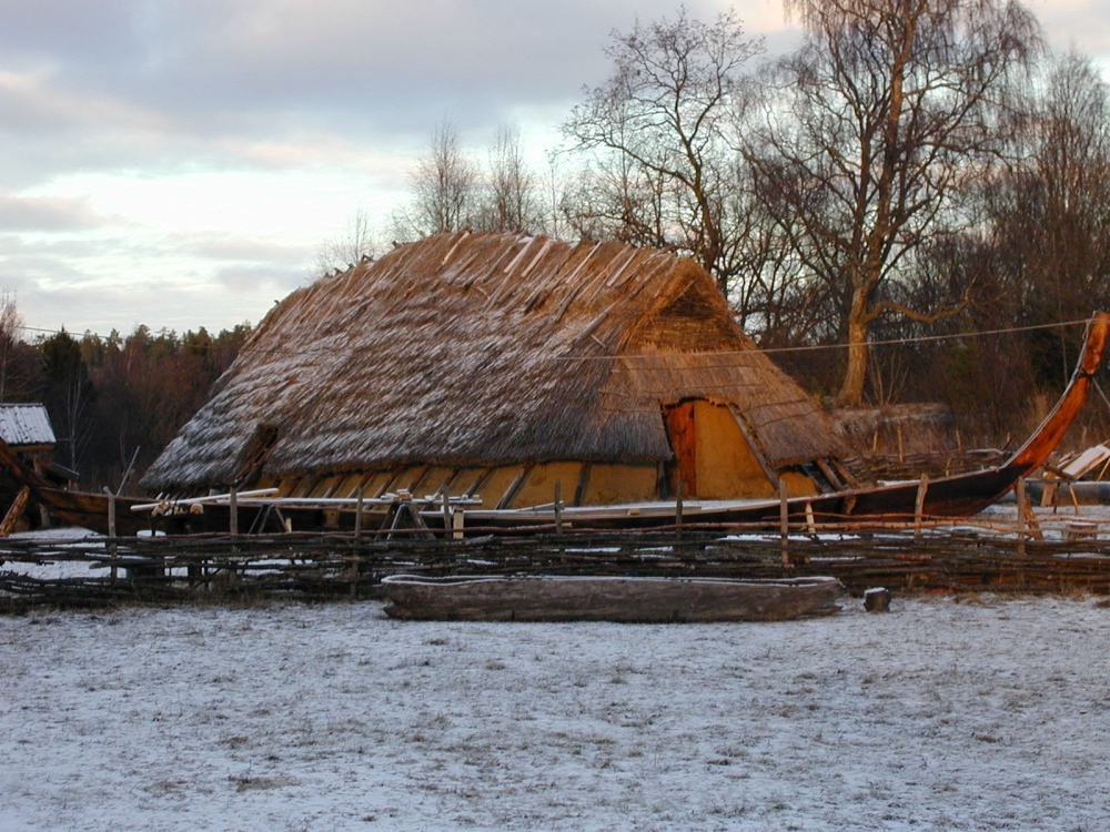 Canva - Viking home.jpg