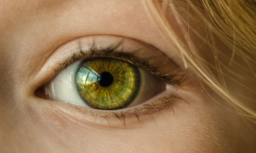 canva-persons-eye